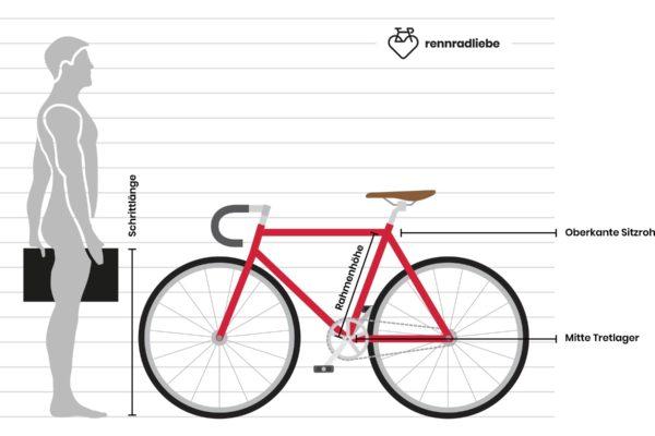 Rennrad Rahmengröße berechnen